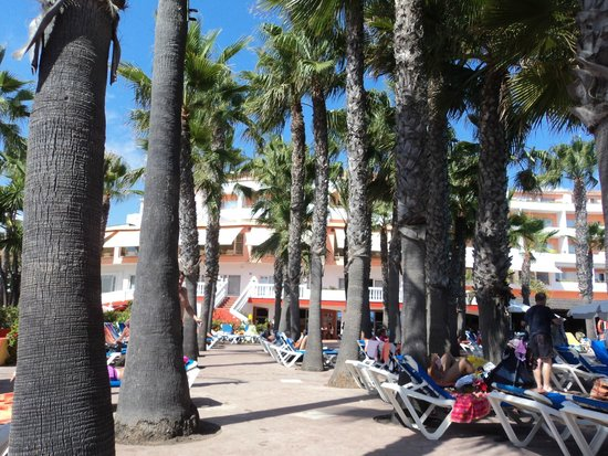 Marbella Playa Hotel: pool