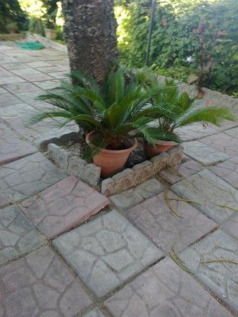 Mattonelle giardino klinker piastrelle per esterni - Mattonelle giardino ...
