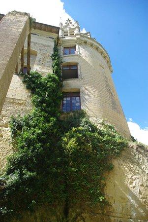 Chateau de Breze : Depuis les douves