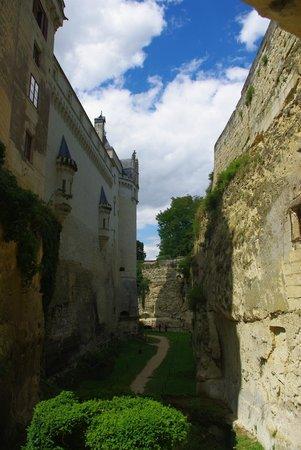 Chateau de Breze : Dans la douve