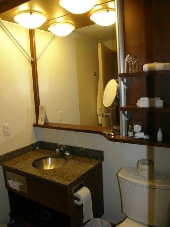 Hotel & Suites Le Dauphin Quebec : baño