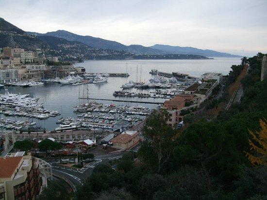 大公宮殿脇の展望台から港全体がよく見えます picture of monte carlo