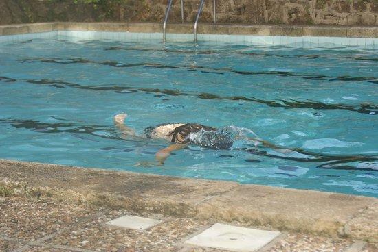 Hesperia Peregrino: piscina perfecta