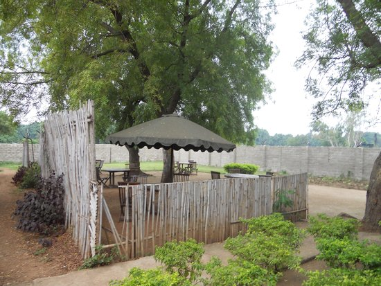Hamza Inn: the garden