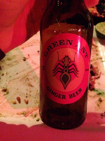 Green Ant Cantina: The ginger beer, go for it! It tastes awesome!