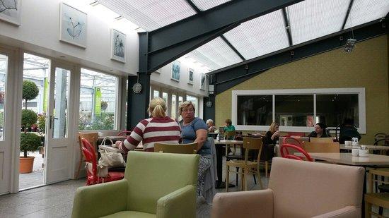 Arboretum Your Home & Garden Heaven: Tea Room @ Rachels Cafe
