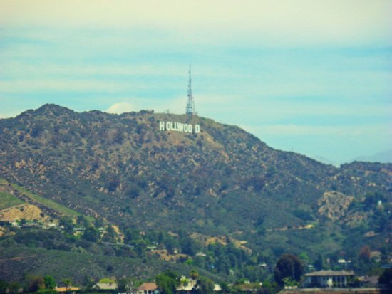 Hollywood Hills 4
