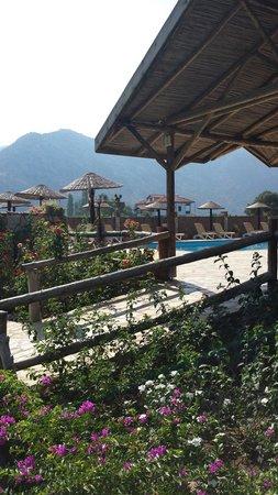 Sedir Resort - Hotel Rooms, Bungalows & Apartments: View from hammock