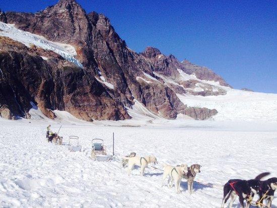 Herbert Glacier : El trineo de perros
