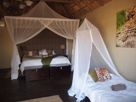 Umkumbe Safari Lodge: Superior room with extra beds for kids