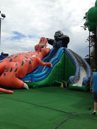 Cape Cod Inflatable Park: Inflatables