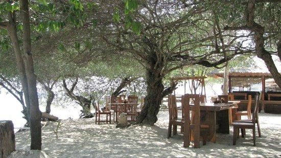 Alam Gili: restaurant