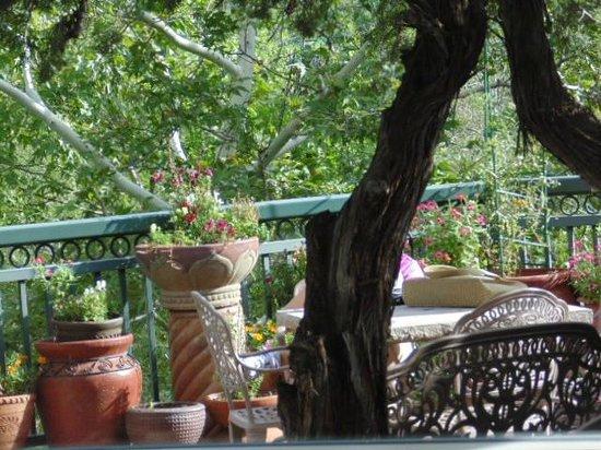 The Inn Above Oak Creek: Terrace