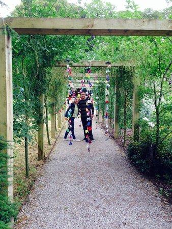 Blarney Castle & Gardens: Magical gardens