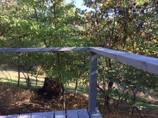 Bonnybrooke Farm : Deck view