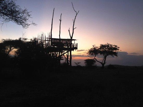 Ndarakwai Ranch Camp: Tree House