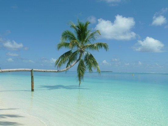 Conrad Maldives Rangali Island: Pure pasadise