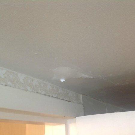 Millennium Hotel Durham: Peeling Batroom Ceiling