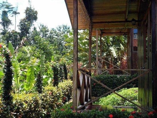 Villas Josipek: Las cabañas están alineadas pero guardan su espacio de intimidad.