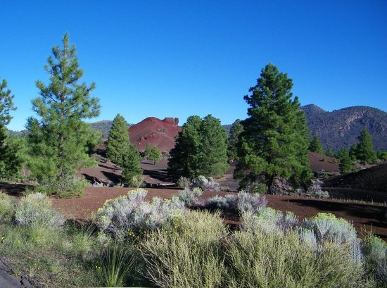 Sunset Crater Volcano National Monument : Little red cinder hill.