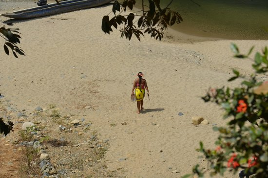 Tranviatour: playa