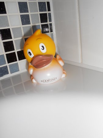 The Hermitage Hotel Bournemouth: Rubber duck to take home at the end of your stay