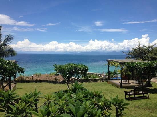 Turtle Bay Dive Resort: View of the sea from the resort's garden