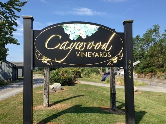 ‪Caywood Vineyards‬