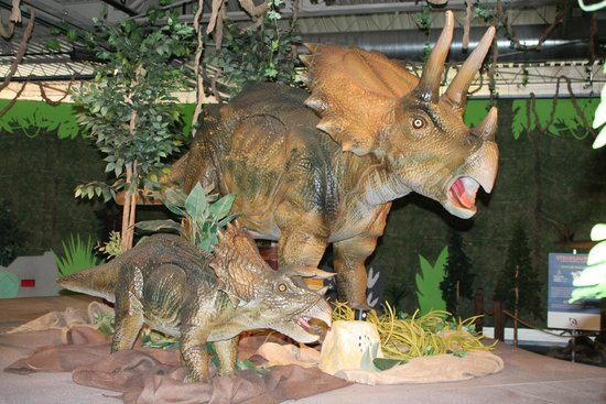 Omaha Children's Museum: One of the exhibits on display now ...