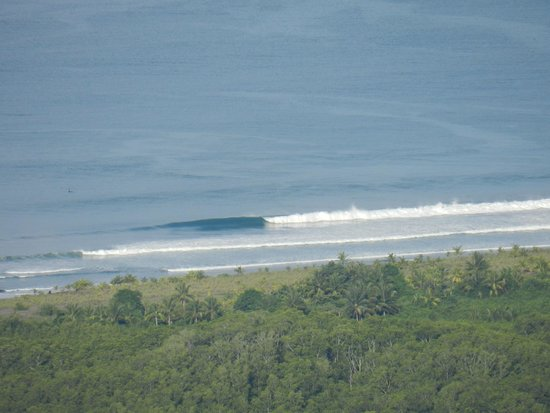 Kalon Surf - Surf Coaching Resort : View from the pool area.