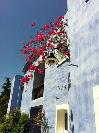 Candia Park Village : maison bleue