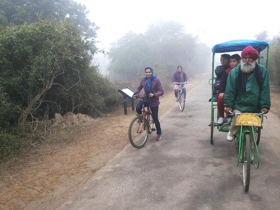 Keoladeo National Park: Family on drive
