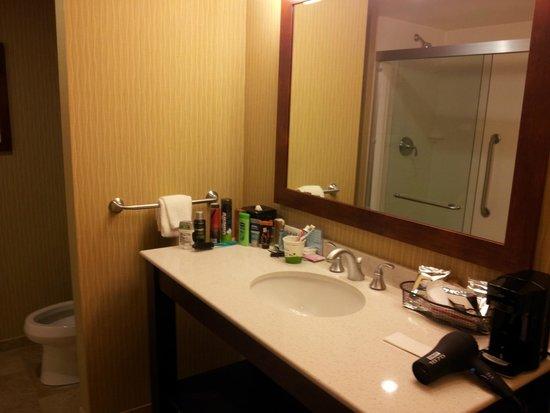 Hampton Inn & Suites Pittsburgh/Waterfront-West Homestead: The bathroom