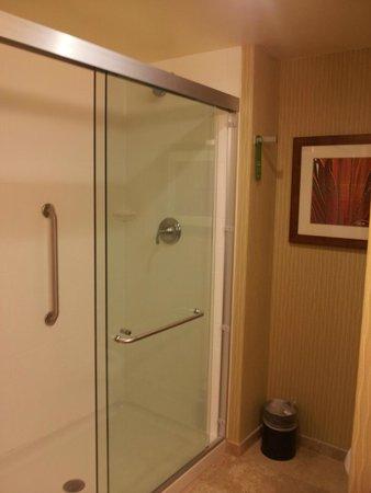 Hampton Inn & Suites Pittsburgh/Waterfront-West Homestead: Bathroom