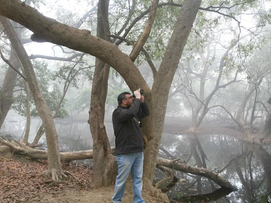 Keoladeo National Park: Me in action