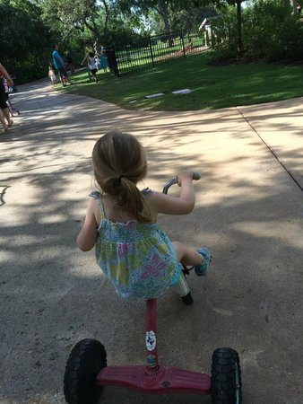 Hyatt Regency Hill Country Resort and Spa: Free use of bikes and tricycles on property