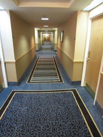 Crowne Plaza Los Angeles Harbor Hotel: Hallway shaped like a gutter