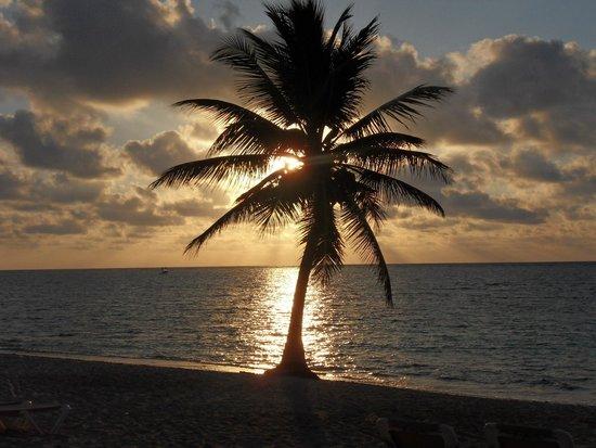 PavoReal Beach Resort Tulum: Alba .....