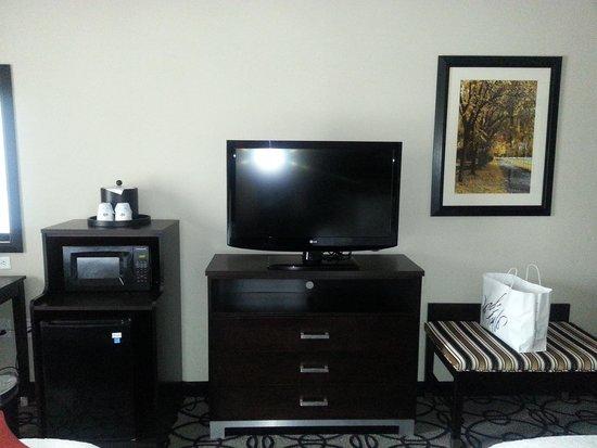Hampton Inn & Suites Columbia / South : Flat screen tv