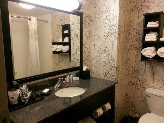 Hampton Inn & Suites Columbia / South: bathroom