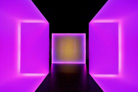 Museum of Fine Arts, Houston : Fine Arts Museum