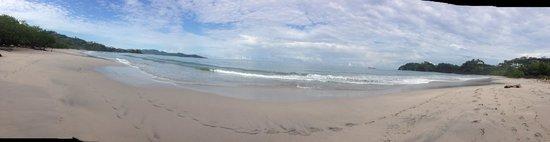Flamingo Beach Resort & Spa: Vista panorámica de la playa
