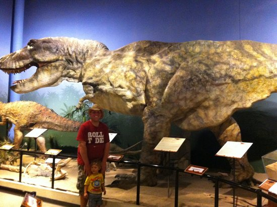 One Of The Few Dinos Picture Of Creation Museum
