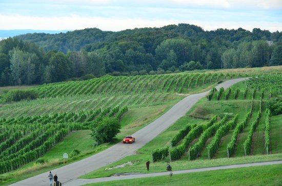 Chateau Chantal Winery and Inn: Winery
