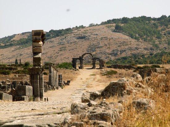 Site archéologique de Volubilis : L'antico ingresso