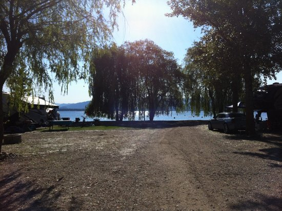 Shuswap Lake at Cottonwood Family Campground