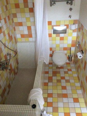 Bleibtreu Hotel: awful shower bath tub