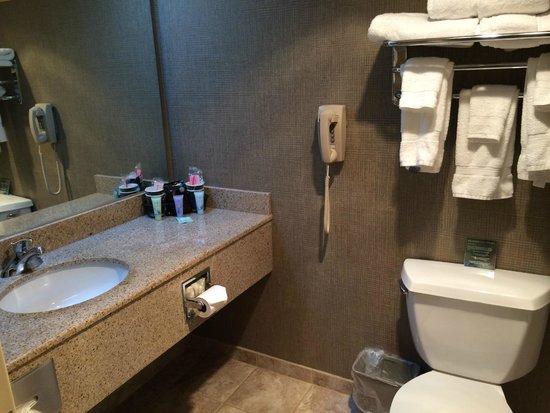 Par-A-Dice Hotel And Casino: Bathroom