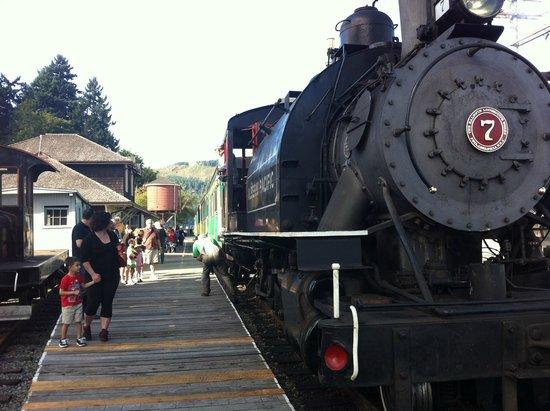 Alberni Pacific Railway: Alberni Steam train at station