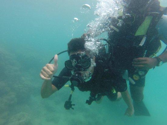 Andaman Bubbles: Scuuuba